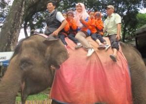 Sekolah Sd Swasta Terbaik di Bandung, Sekolah Sd di bandung, Sekolah di Sdit, Sekolah Sd Full Day di Bandung, Sekolah Sd Islam di Bandung, Sekolah Sd Negeri Terbaik di Bandung, Sekolah Sd Unggulan di Bandung